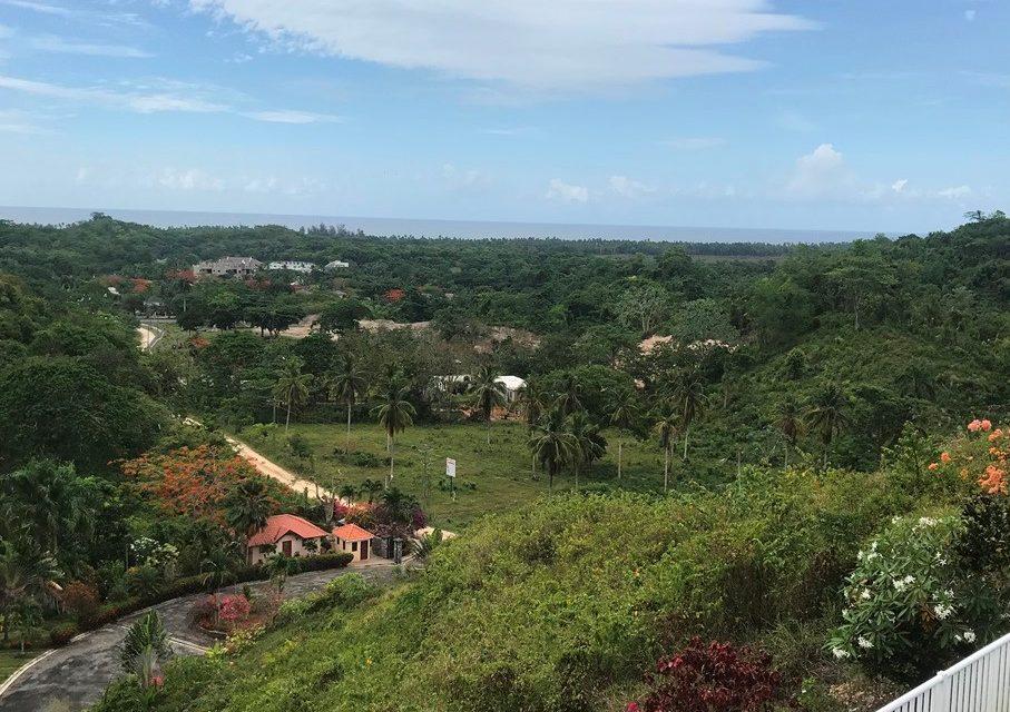 Las Palmas Tropical Residencial  Project