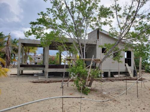 Frigate Caye Belize8