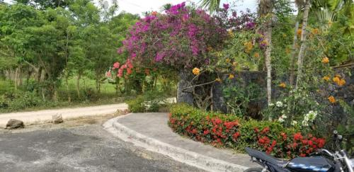 Las Palmas Tropical Project Residences